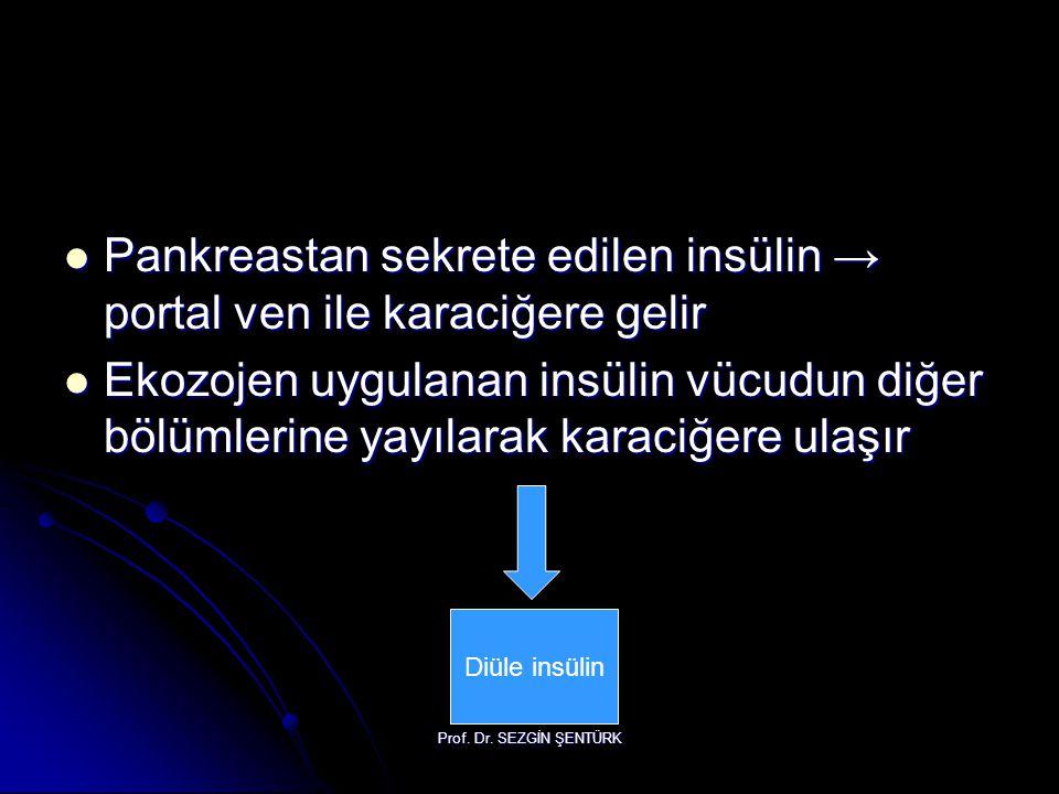 Prof. Dr. SEZGİN ŞENTÜRK Pankreastan sekrete edilen insülin → portal ven ile karaciğere gelir Pankreastan sekrete edilen insülin → portal ven ile kara