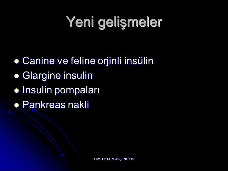 Prof. Dr. SEZGİN ŞENTÜRK Yeni gelişmeler Canine ve feline orjinli insülin Canine ve feline orjinli insülin Glargine insulin Glargine insulin Insulin p