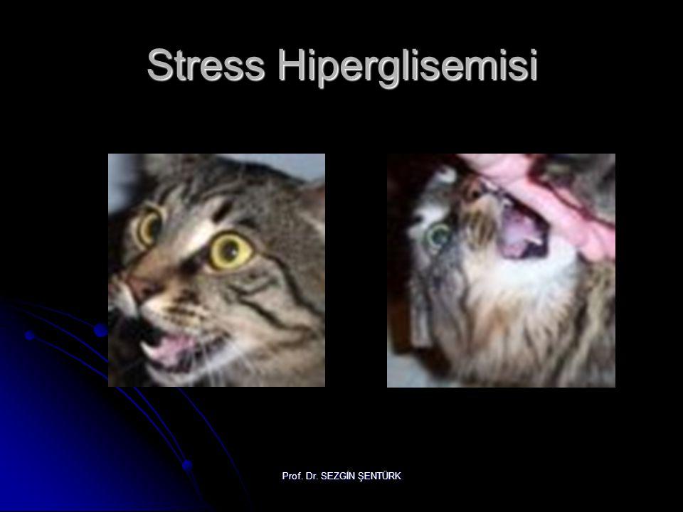 Prof. Dr. SEZGİN ŞENTÜRK Stress Hiperglisemisi