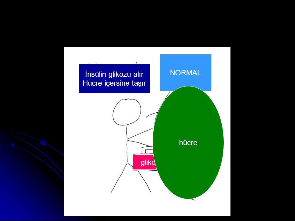 Prof. Dr. SEZGİN ŞENTÜRK NORMAL İnsülin glikozu alır Hücre içersine taşır glikoz hücre