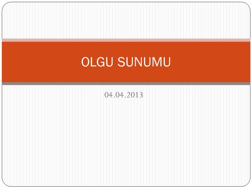 04.04.2013 OLGU SUNUMU