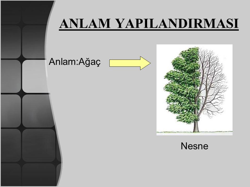 Anlam:Ağaç Nesne