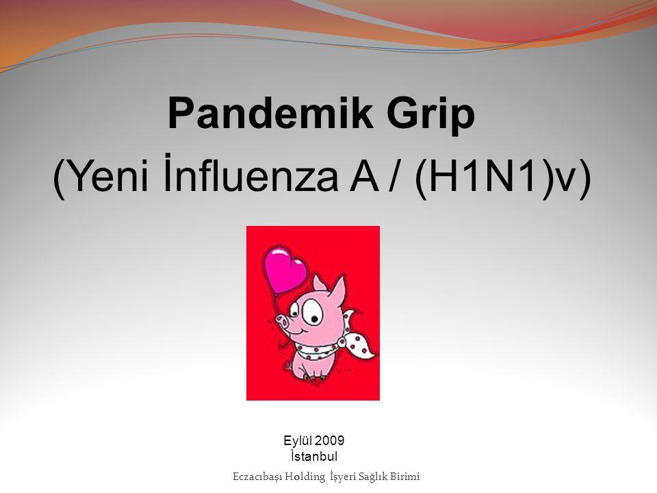 Pandemik Grip (Yeni İnfluenza A / (H1N1)v) Eylül 2009 İstanbul Eczacıbaşı Holding İşyeri Sağlık Birimi