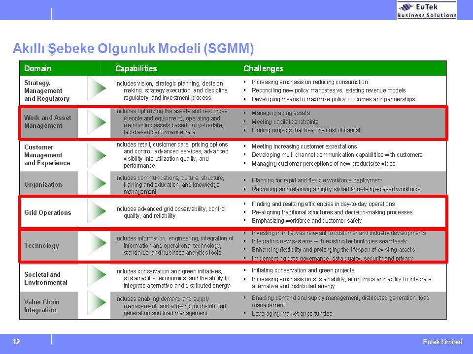 Eutek Limited Akıllı Şebeke Olgunluk Modeli (SGMM) 12