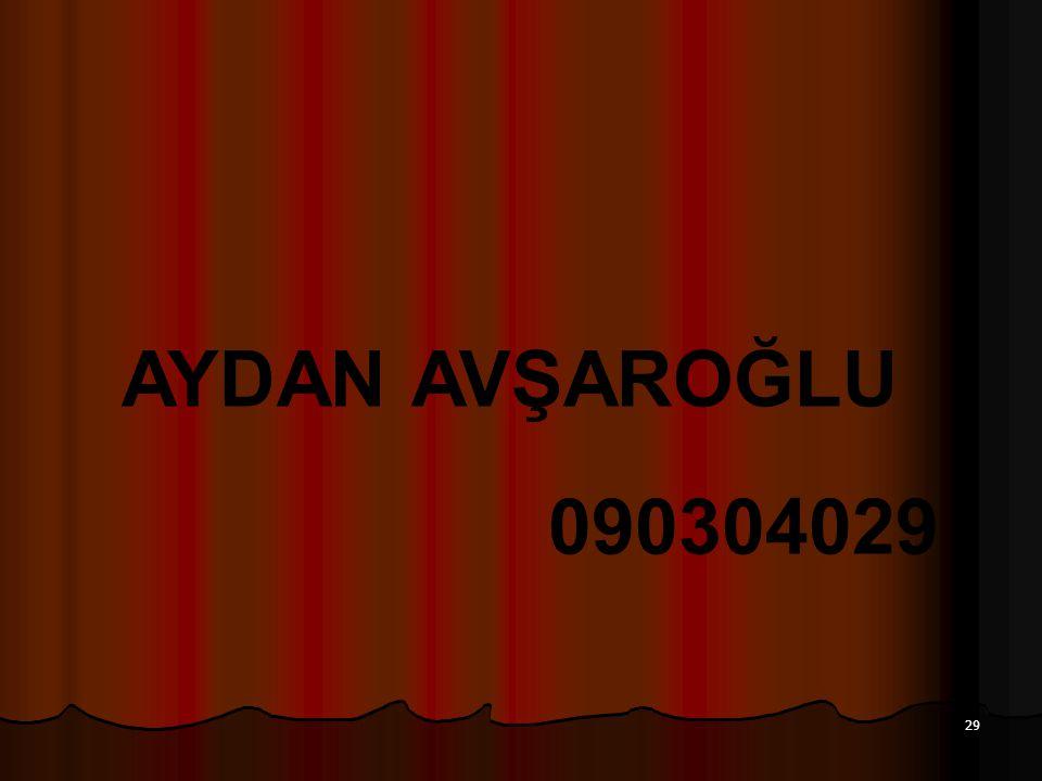 29 AYDAN AVŞAROĞLU 090304029