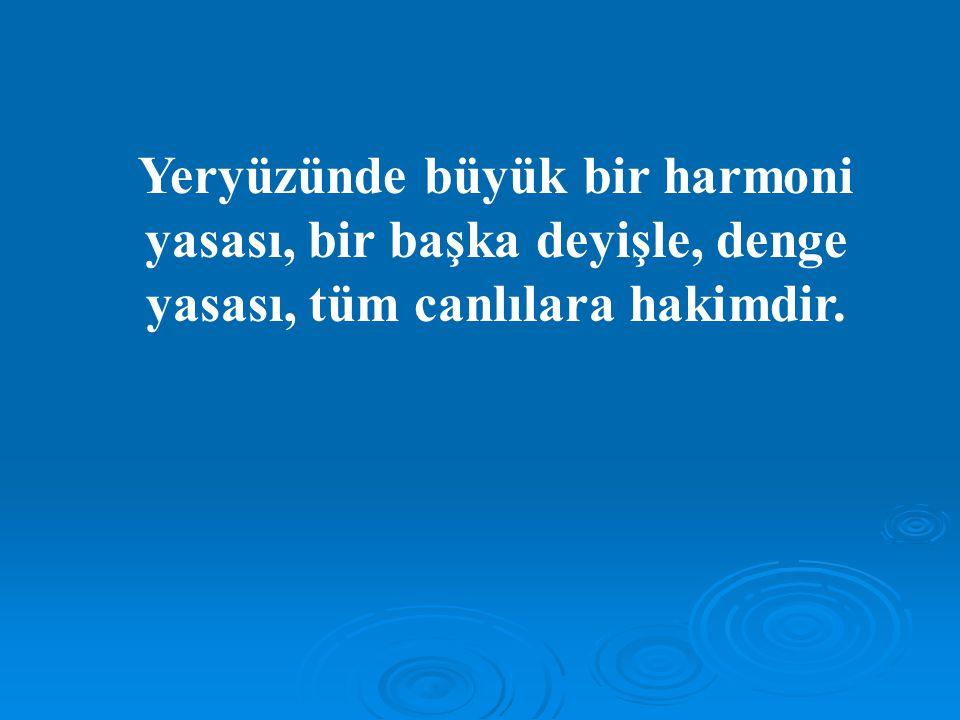 Yeryüzünde büyük bir harmoni yasası, bir başka deyişle, denge yasası, tüm canlılara hakimdir.