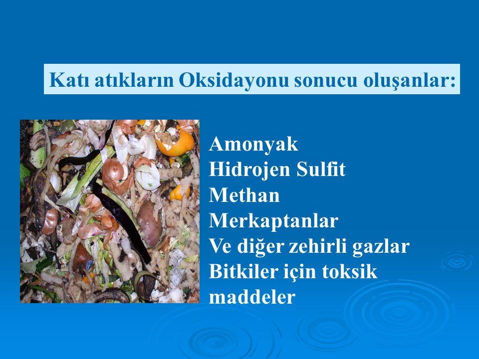 Amonyak Hidrojen Sulfit Methan Merkaptanlar Ve diğer zehirli gazlar Bitkiler için toksik maddeler Katı atıkların Oksidayonu sonucu oluşanlar: