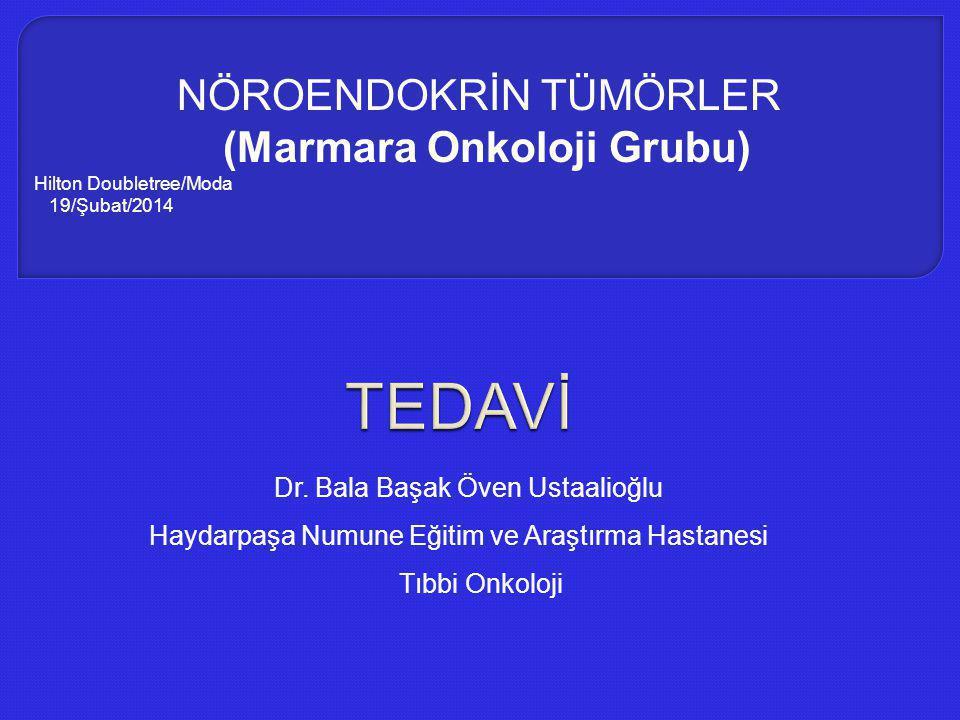 Dr. Bala Başak Öven Ustaalioğlu Haydarpaşa Numune Eğitim ve Araştırma Hastanesi Tıbbi Onkoloji NÖROENDOKRİN TÜMÖRLER (Marmara Onkoloji Grubu) Hilton D