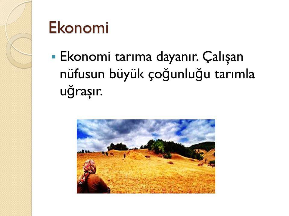 Ekonomi  Ekonomi tarıma dayanır. Çalışan nüfusun büyük ço ğ unlu ğ u tarımla u ğ raşır.