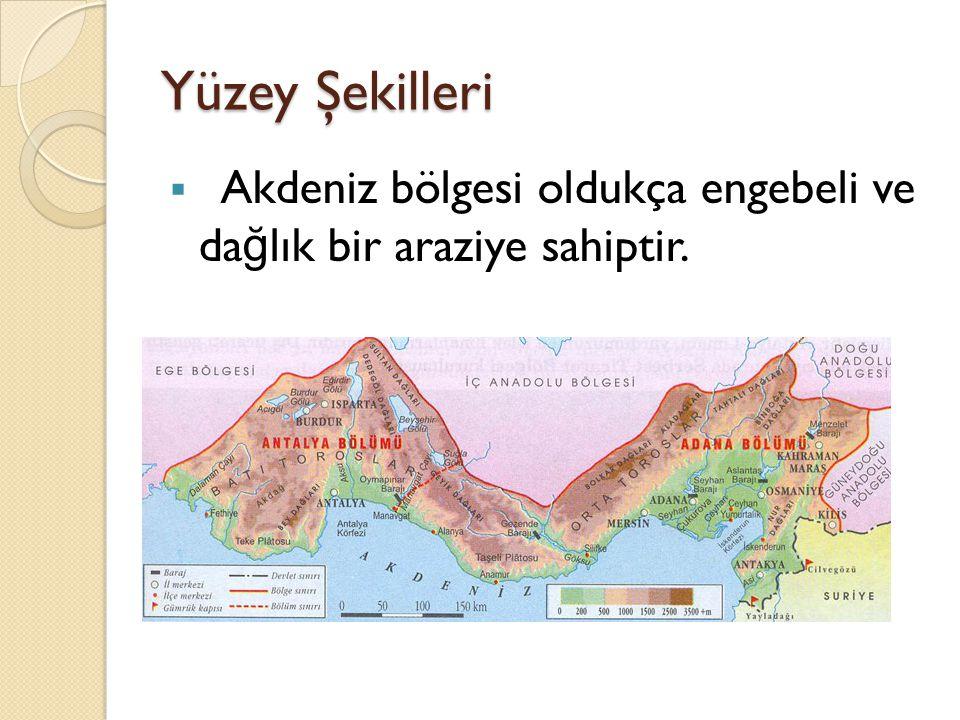 Yüzey Şekilleri  Akdeniz bölgesi genellikle az girintili çıkıntılı olması nedeniyle ve geniş yaylar çizmesi bakımıyla Karadeniz kıyılarını benzer.