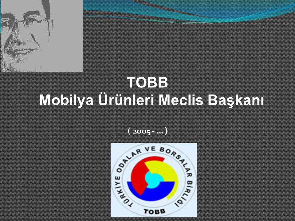 TOBB Mobilya Ürünleri Meclis Başkanı ( 2005 - … )