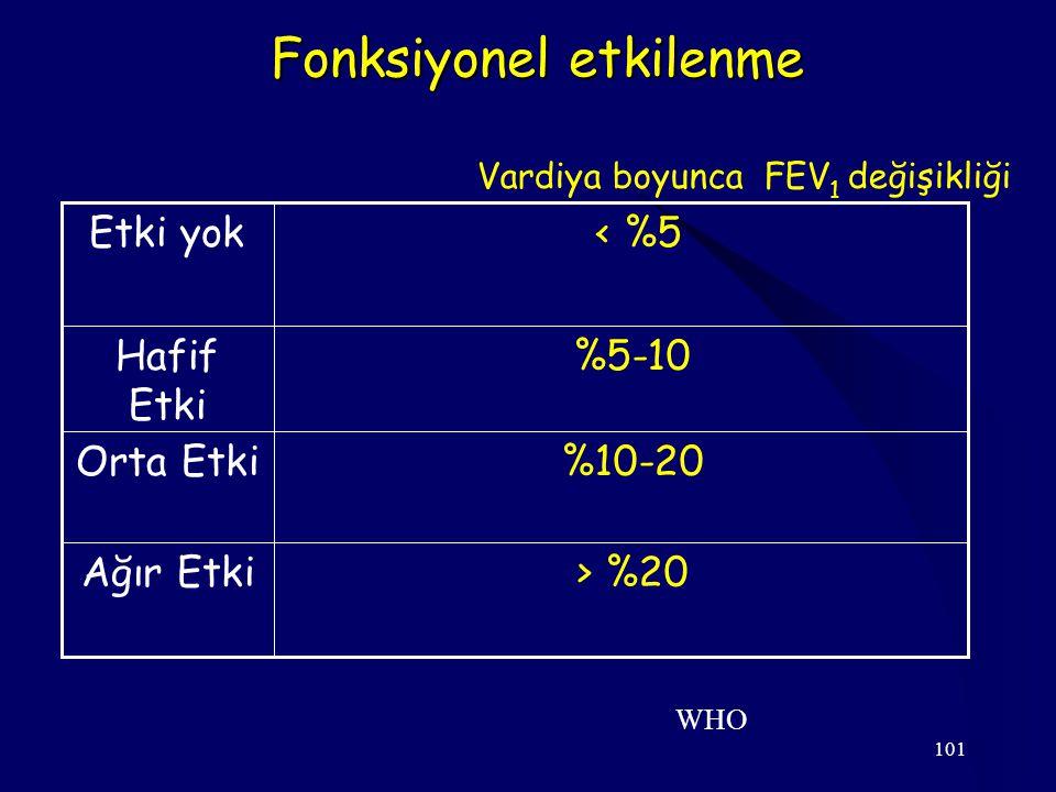 101 Fonksiyonel etkilenme > %20Ağır Etki %10-20Orta Etki %5-10Hafif Etki < %5Etki yok WHO Vardiya boyunca FEV 1 değişikliği