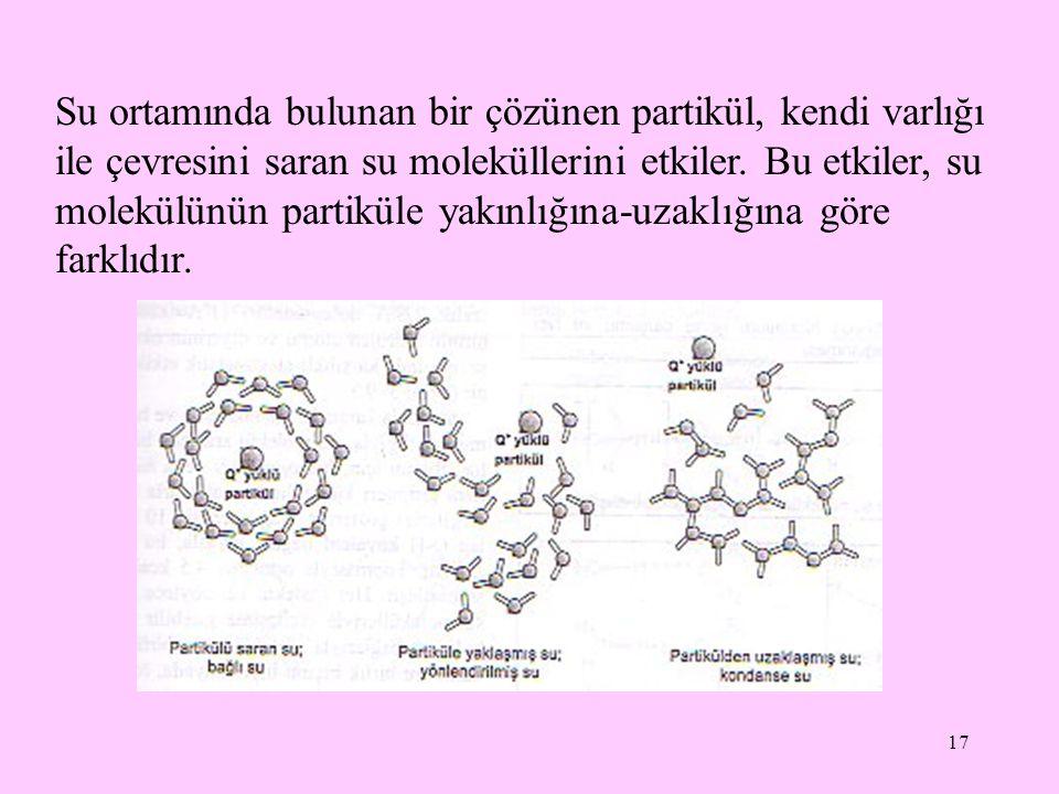 17 Su ortamında bulunan bir çözünen partikül, kendi varlığı ile çevresini saran su moleküllerini etkiler. Bu etkiler, su molekülünün partiküle yakınlı