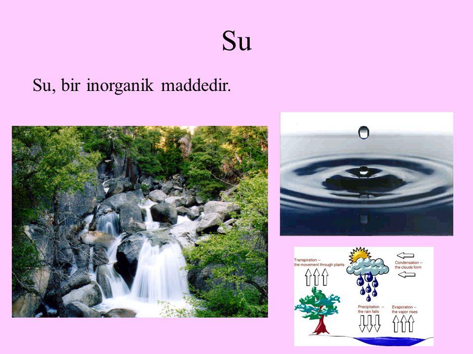 2 Su Su, bir inorganik maddedir.