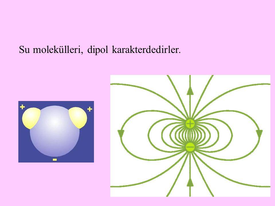 5 Su molekülleri, dipol karakterdedirler.