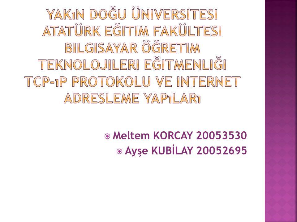  Meltem KORCAY 20053530  Ayşe KUBİLAY 20052695