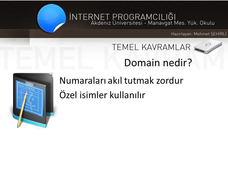 Domain nedir? Numaraları akıl tutmak zordur Özel isimler kullanılır