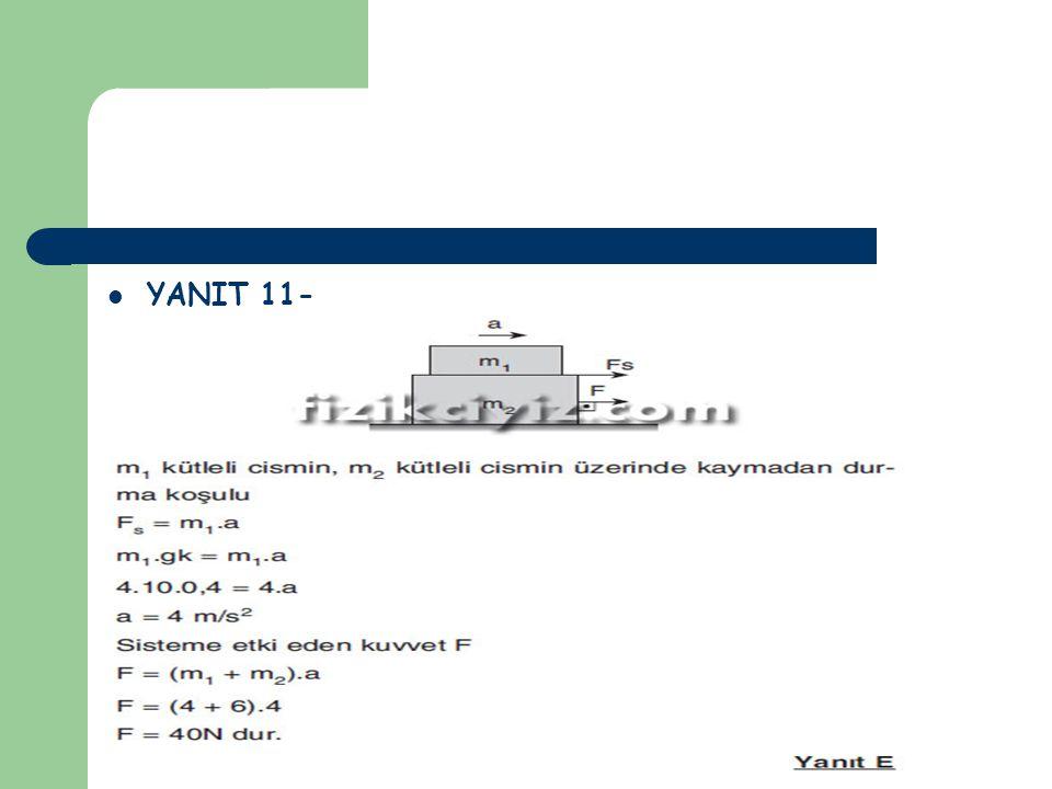 YANIT 11-