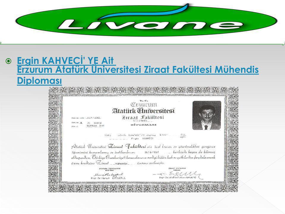  Ergin KAHVECİ' YE Ait Erzurum Atatürk Üniversitesi Ziraat Fakültesi Mühendis Diploması Ergin KAHVECİ' YE Ait Erzurum Atatürk Üniversitesi Ziraat Fak