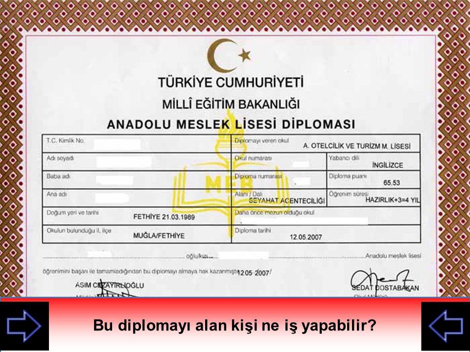 Bu diploma nerden alınmış?Bu diplomayı alan kişi ne iş yapabilir?
