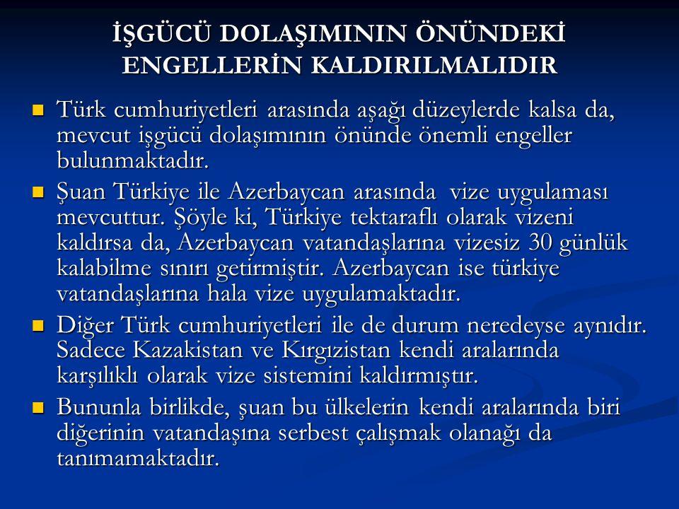 Türk cumhuriyetleri arasında aşağı düzeylerde kalsa da, mevcut işgücü dolaşımının önünde önemli engeller bulunmaktadır.