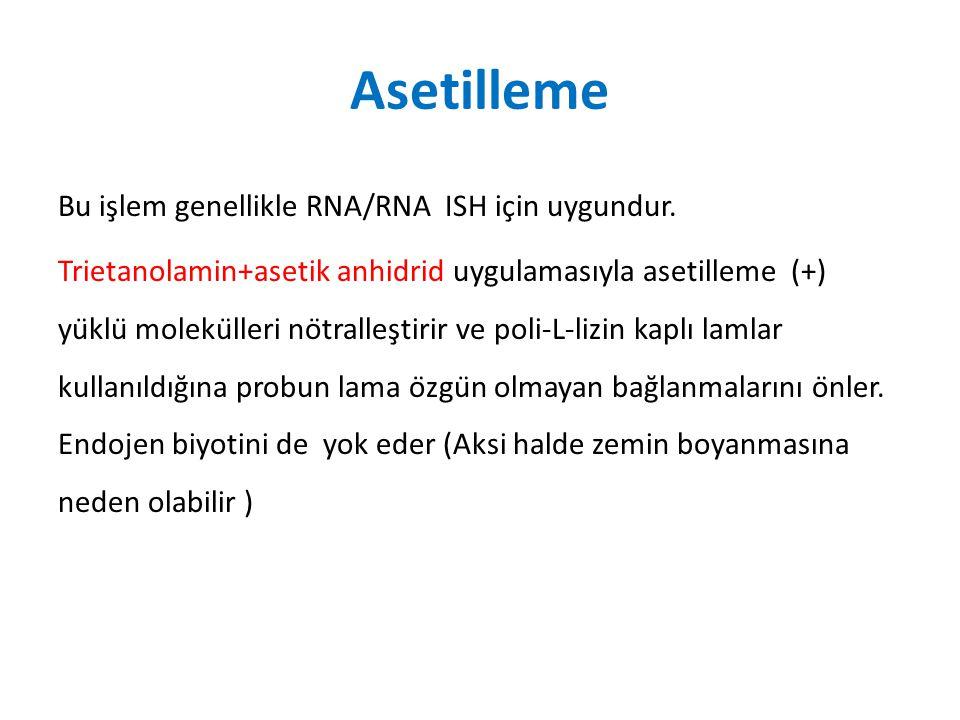 Asetilleme Bu işlem genellikle RNA/RNA ISH için uygundur. Trietanolamin+asetik anhidrid uygulamasıyla asetilleme (+) yüklü molekülleri nötralles