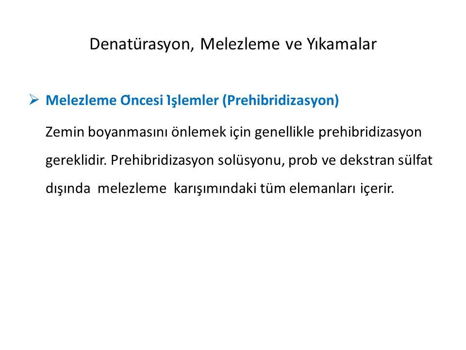  Denatürasyon DNA/DNA ISH için prob ve hedef dizilerin denatürasyonu gereklidir.