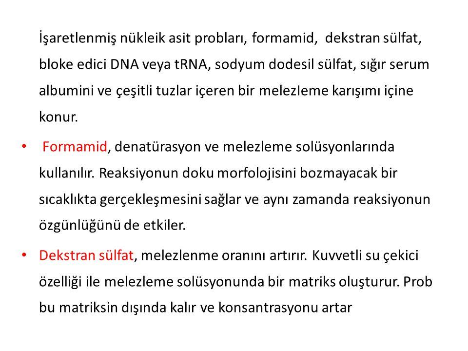 İşaretlenmemiş bloke edici DNA ve tRNA probun özgün olmadığı bölgelerde melezlenmesini önlemek için kullanılır.