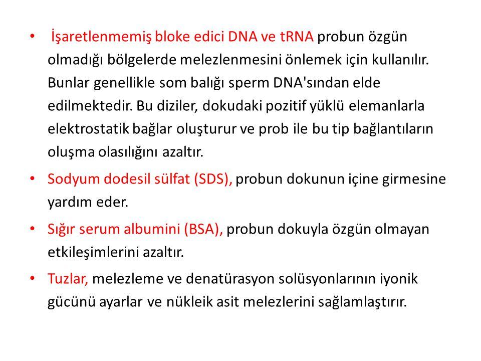 İşaretlenmemiş bloke edici DNA ve tRNA probun özgün olmadığı bölgelerde melezlenmesini önlemek için kullanılır. Bunlar genellikle som balığı sperm DNA