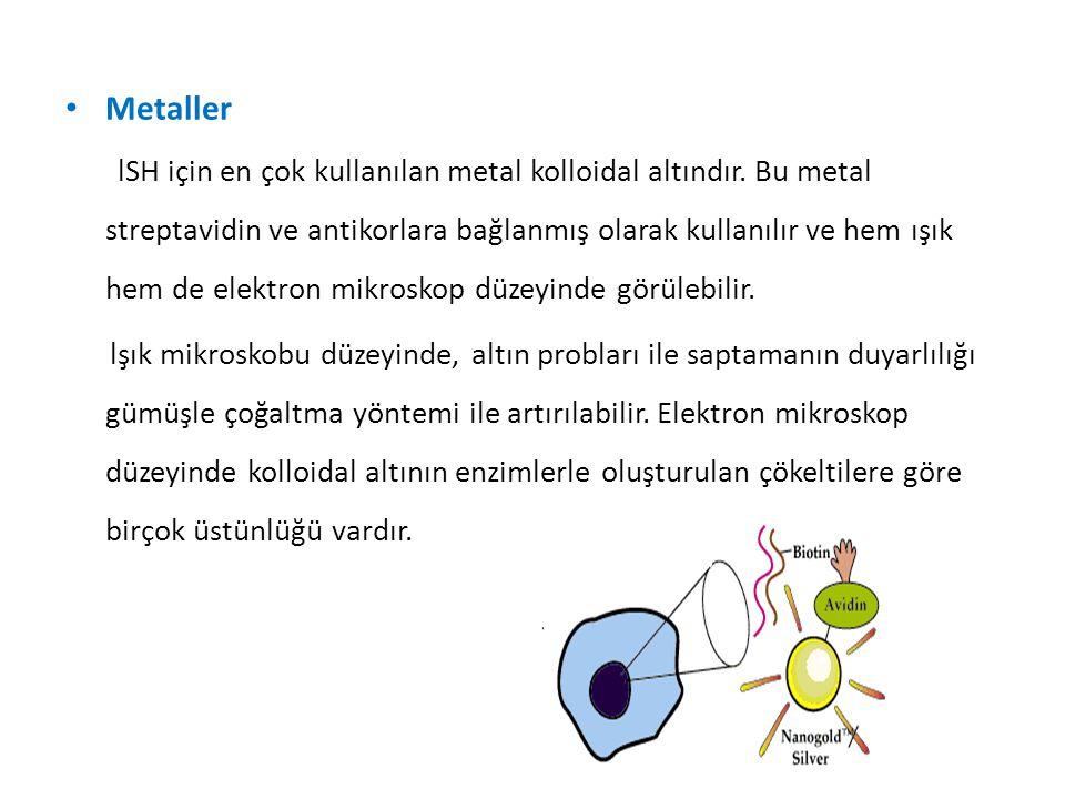 Metaller lSH için en çok kullanılan metal kolloidal altındır. Bu metal streptavidin ve antikorlara bağlanmış olarak kullanılır ve hem ışık hem de elek