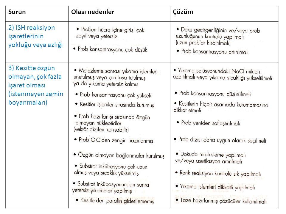 ISH Protokolü (Eichele Lab.'ın protokolünden) 1.Örneklerin hazırlanması ve dokunun fiksasyonu, 2.