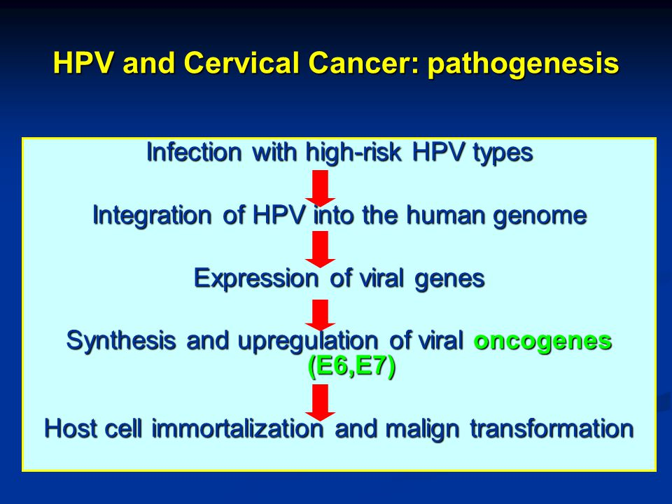 HPV and Cervical Cancer: pathogenesis Infection with high-risk HPV types Integration of HPV into the human genome Expression of viral genes Synthesis and upregulation of viral oncogenes (E6,E7) Host cell immortalization and malign transformation