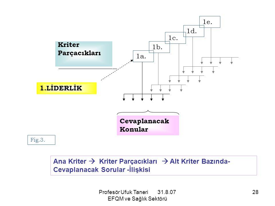 Profesör Ufuk Taneri 31.8.07 EFQM ve Sağlık Sektörü 28 1.LİDERLİK 1e. 1d. 1a. 1b. 1c. Kriter Parçacıkları Cevaplanacak Konular Fig.3. Ana Kriter  Kri