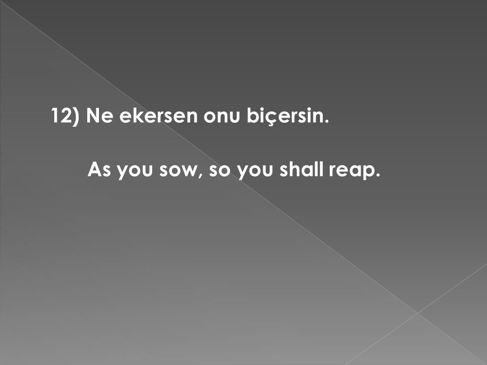 12) Ne ekersen onu biçersin. As you sow, so you shall reap.