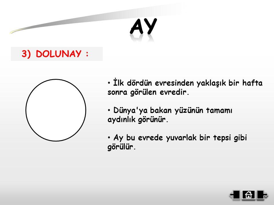 3) DOLUNAY : İlk dördün evresinden yaklaşık bir hafta sonra görülen evredir.