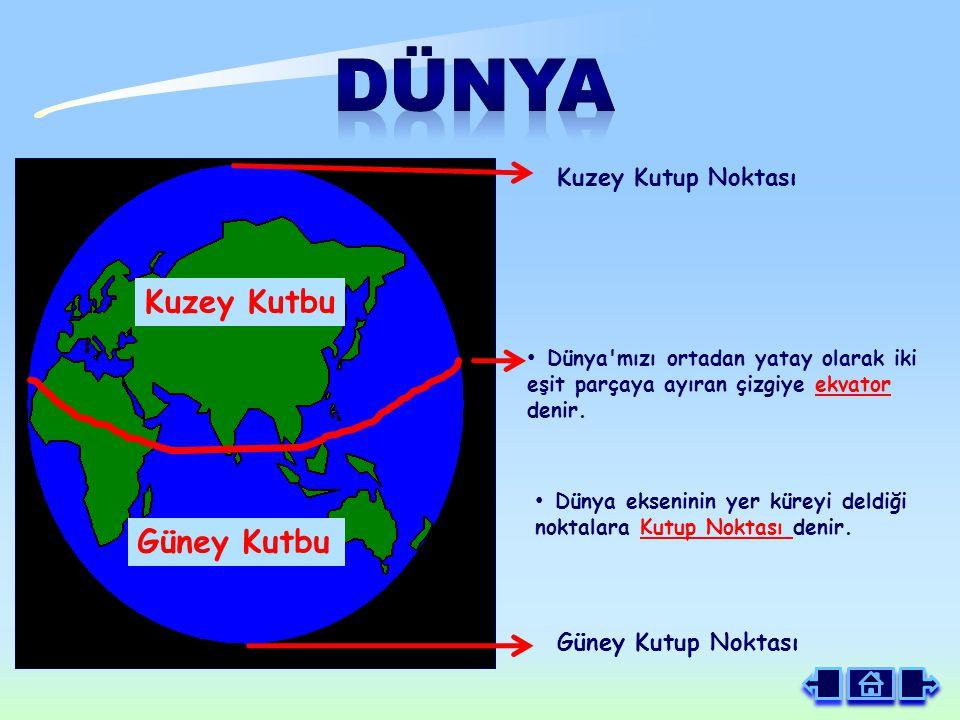 Dünya mızı ortadan yatay olarak iki eşit parçaya ayıran çizgiye ekvator denir.