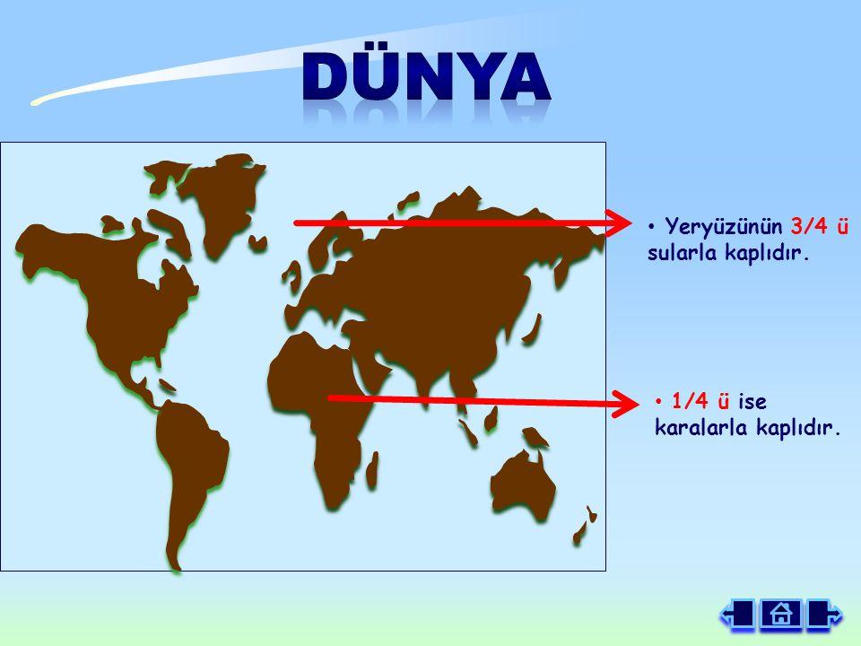 Yeryüzünün 3/4 ü sularla kaplıdır. 1/4 ü ise karalarla kaplıdır.