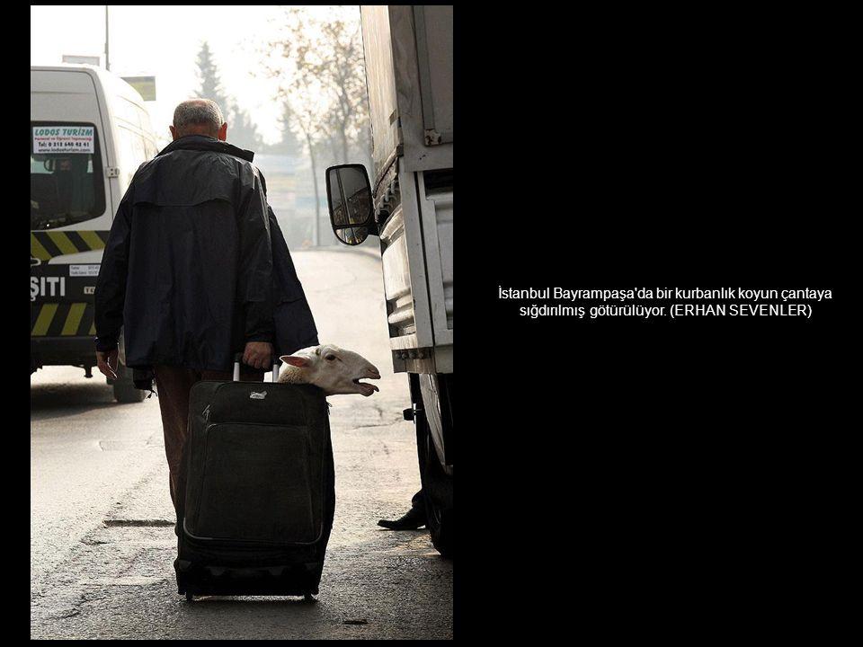 İzmir'de gün batımı objektiflere böyle yansımıştı. (ANADOLU AJANSI - ALİ ATMACA)