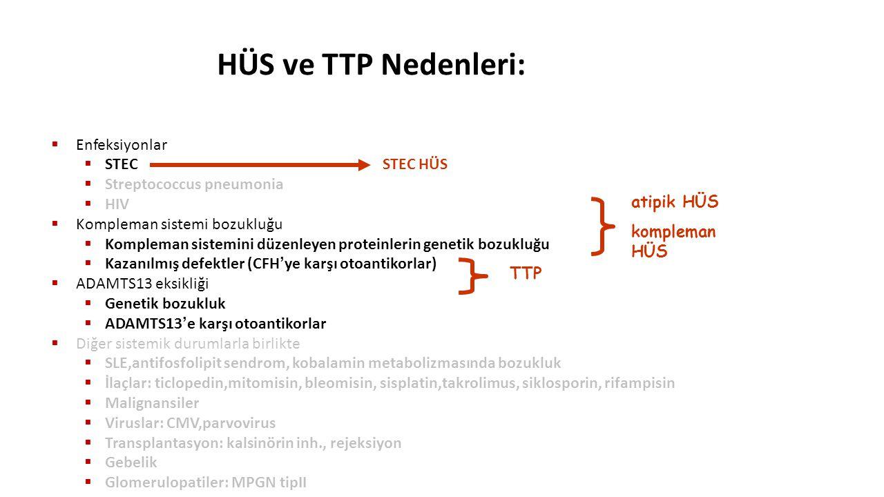 HÜS ve TTP Nedenleri:  Enfeksiyonlar  STEC STEC HÜS  Streptococcus pneumonia  HIV  Kompleman sistemi bozukluğu  Kompleman sistemini düzenleyen p