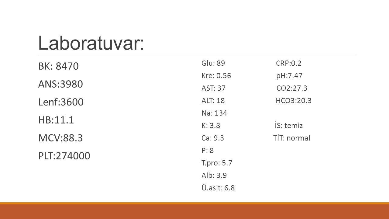 Laboratuvar: BK: 8470 ANS:3980 Lenf:3600 HB:11.1 MCV:88.3 PLT:274000 Glu: 89 CRP:0.2 Kre: 0.56 pH:7.47 AST: 37 CO2:27.3 ALT: 18 HCO3:20.3 Na: 134 K: 3