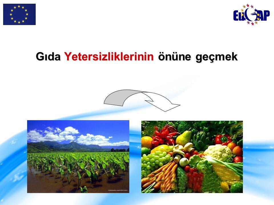 Tarımda çalışan kesimin gelir düzeyinin korunması ve artırılması