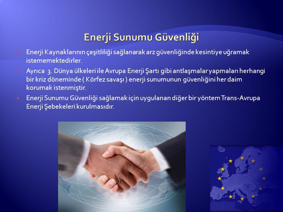  Enerji Kaynaklarının çeşitliliği sağlanarak arz güvenliğinde kesintiye uğramak istememektedirler.  Ayrıca 3. Dünya ülkeleri ile Avrupa Enerji Şartı