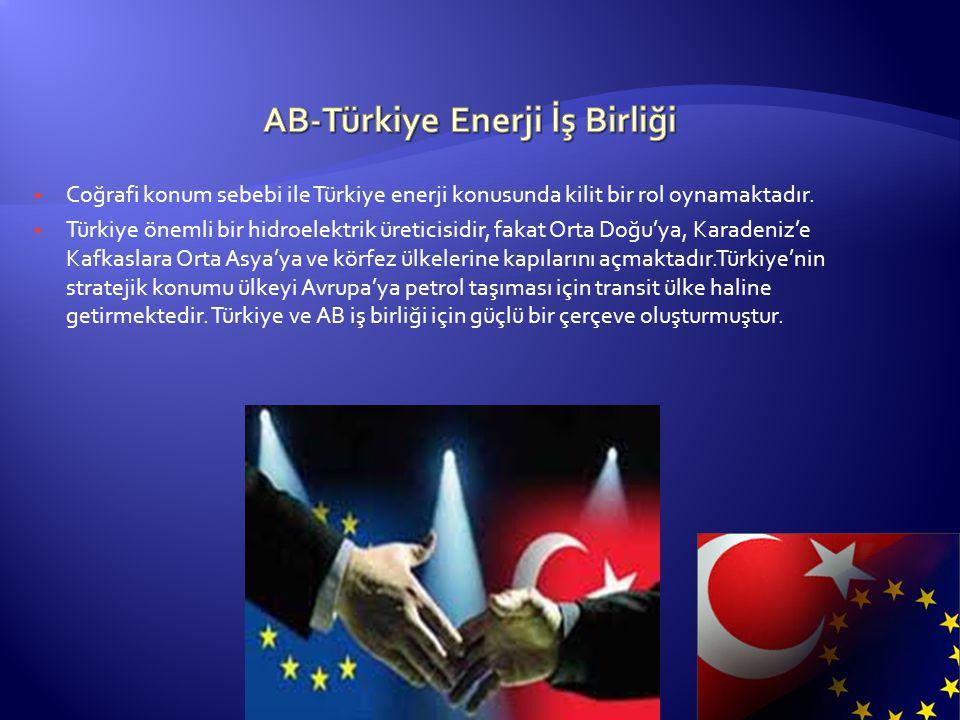  Coğrafi konum sebebi ile Türkiye enerji konusunda kilit bir rol oynamaktadır.  Türkiye önemli bir hidroelektrik üreticisidir, fakat Orta Doğu'ya, K