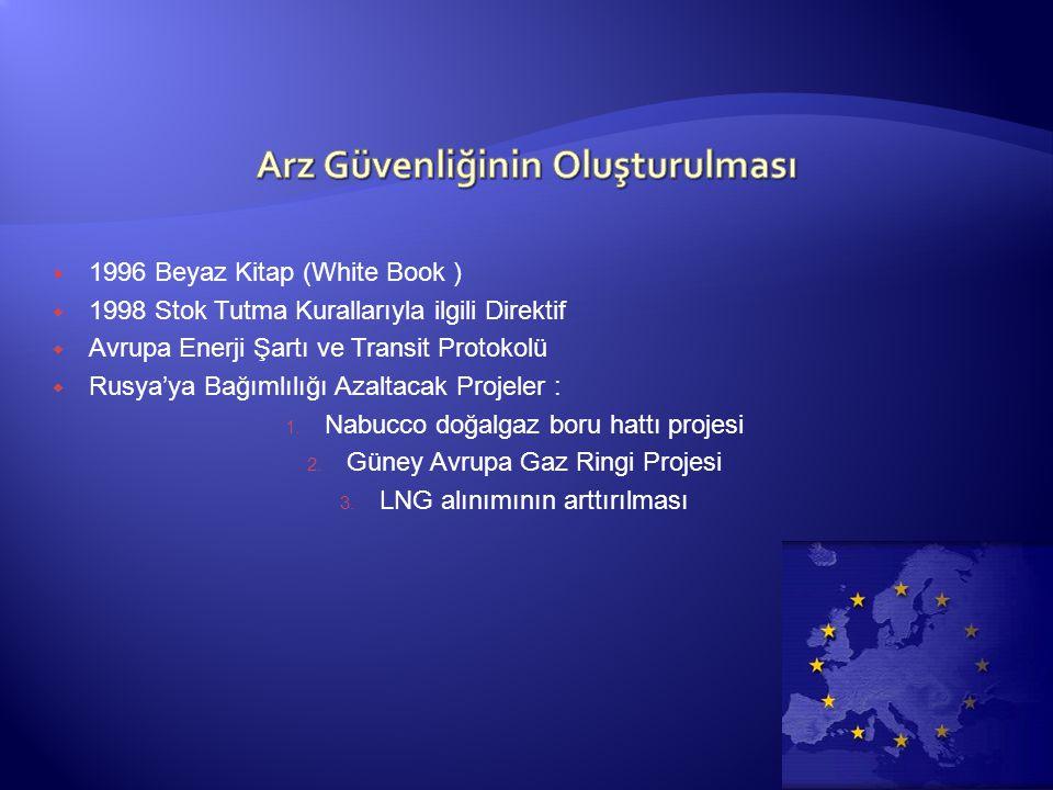  1996 Beyaz Kitap (White Book )  1998 Stok Tutma Kurallarıyla ilgili Direktif  Avrupa Enerji Şartı ve Transit Protokolü  Rusya'ya Bağımlılığı Azaltacak Projeler : 1.