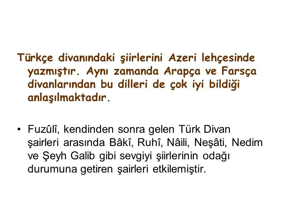 Türkçe divanındaki şiirlerini Azeri lehçesinde yazmıştır.
