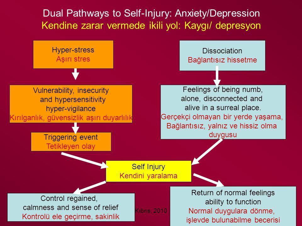 Kıbrıs, 2010 Dual Pathways to Self-Injury: Anxiety/Depression Kendine zarar vermede ikili yol: Kaygı/ depresyon Hyper-stress Aşırı stres Vulnerability