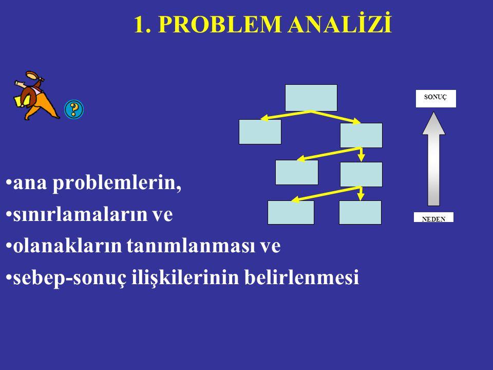 ana problemlerin, sınırlamaların ve olanakların tanımlanması ve sebep-sonuç ilişkilerinin belirlenmesi 1.