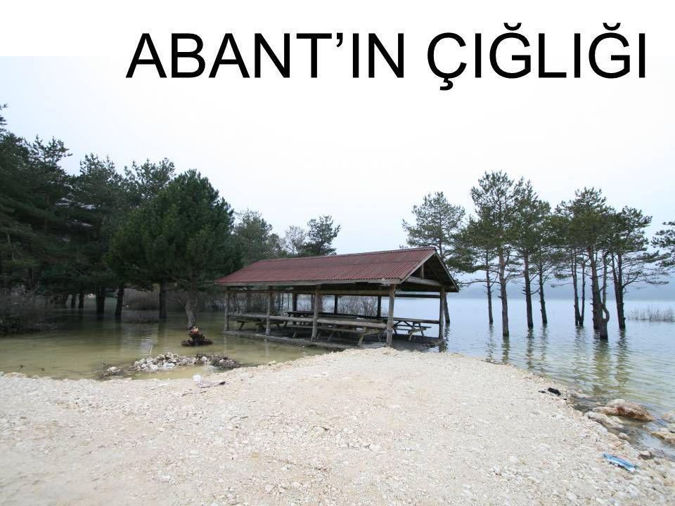 ABANT'IN ÇIĞLIĞI