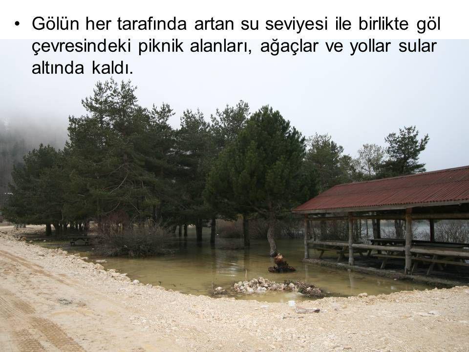 Gölün her tarafında artan su seviyesi ile birlikte göl çevresindeki piknik alanları, ağaçlar ve yollar sular altında kaldı.