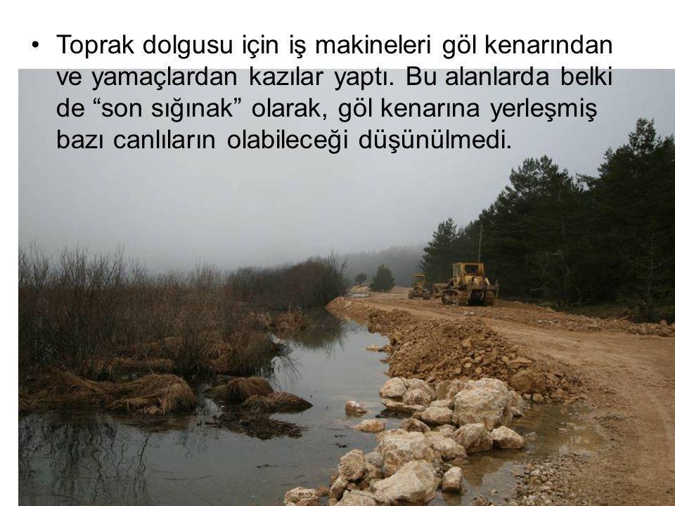 """Toprak dolgusu için iş makineleri göl kenarından ve yamaçlardan kazılar yaptı. Bu alanlarda belki de """"son sığınak"""" olarak, göl kenarına yerleşmiş bazı"""